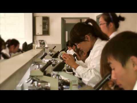 Zhengzhou University - www.tribe361.com