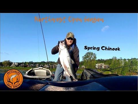 Willamette River Spring Chinook Salmon Fishing