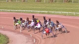 Vidéo de la course PMU PRIX DE LA NORMANDIE
