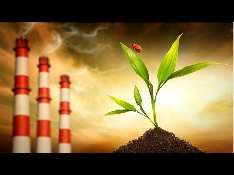 Técnicas de Avaliação de Impactos Ambientais - Conceitos Básicos