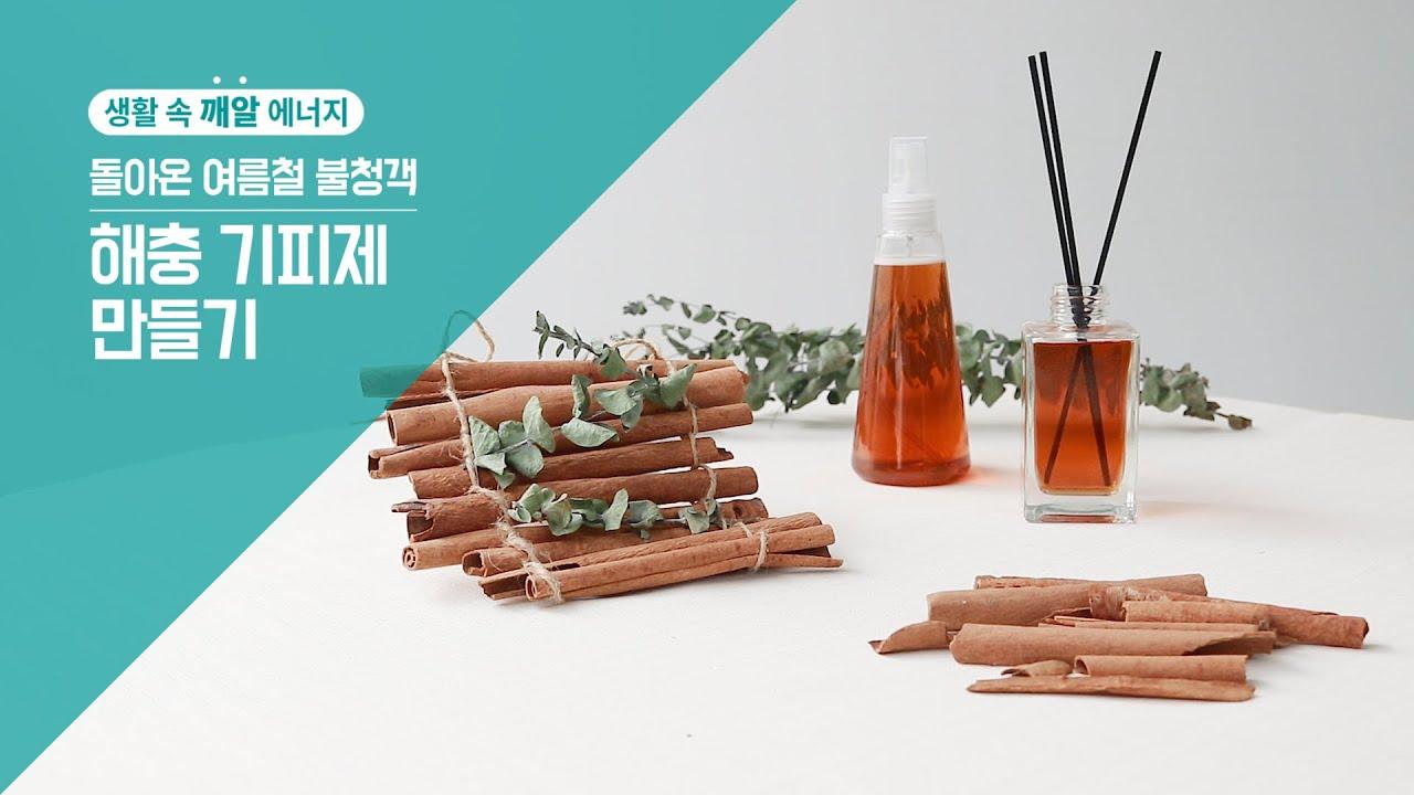 [생활 속 깨알에너지] 돌아온 여름철 불청객, 해충 기피제 만들기