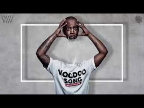 Willy William Voodoo Song Audio [MP4/MP3]
