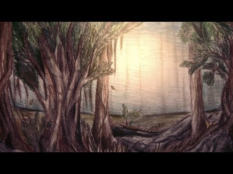 Forest scene speed drawing youtube for Forest scene drawing