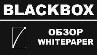 Обзор BlackBox Whitepaper - Децентрализованная Платформа для Управления Работой Будущего