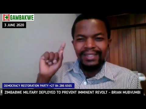 Zimbabwe Military Deployed In Preparation For Imminent Revolt - Brian Mubvumbi