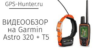 Видеообзор на GPS  ошейник Garmin Astro 320