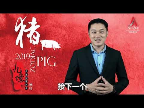 2019 生肖运程 第一集 猪和鼠