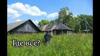 Заброшенная деревня в глуши Ярославской области