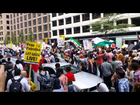 March On Washington DC To End The Massacre In Gaza