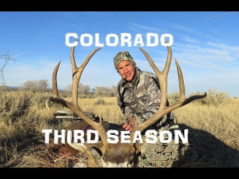 2017 Mule Deer Hunt in Colorado | Third Season