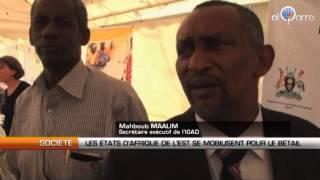 Les Etats d'Afrique de l'est se mobilisent pour le bétail