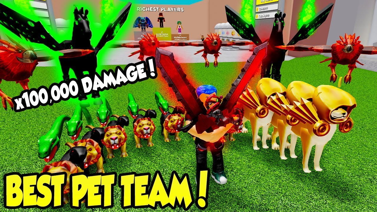 Team Upgrade Roblox - You Have To See My Insane Pet Team In Warrior Simulator Roblox