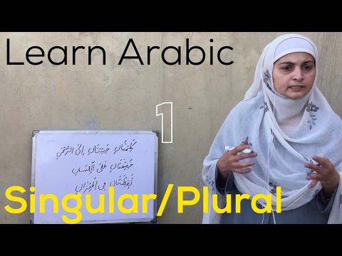 Singular/Plural [Arabic Lesson #4] -1