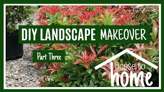 DIY Landscape Makeover pt. 3 🌱|| Clearance Planting Time! 👩��🌾|| Kreatyve Laydiiee
