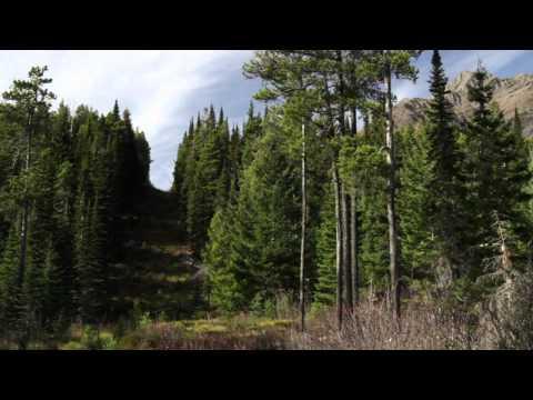 Transcending Boundaries: Perspectives from Waterton-Glacier International Peace Park
