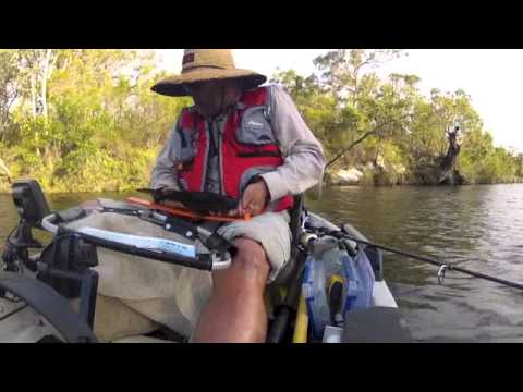 Exploring the Upper Noosa River   Boreen Point to Camp 9
