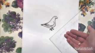 Нарисованный мультфильм голубь с посланием