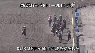 2018年10月13日(土) 3回新潟1日 第6R 距離2500メートル ・動画はJRAの...