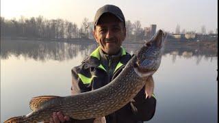 Рыбалка на щуку на озере Белые Камни