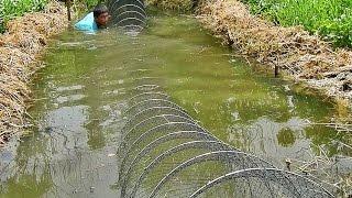 โชว์โง่ดักปลาขวางคลองยาว 30 ห่วง แค่ครึ่งวันก็รู้เรื่อง The best Thailand fishing-net show