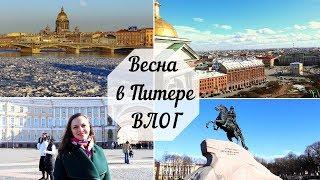 Смотреть видео Что для тебя значит весна? ♥️ Весна в Санкт-Петербурге ♥️ онлайн