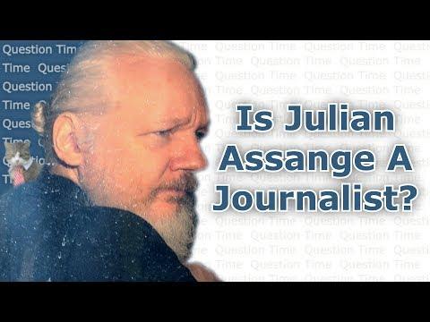 Is Julian Assange a Journalist? MSM Hacks Smear WikiLeaks | QT Politics