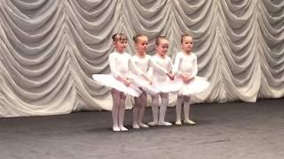 Балет Адажио Танец маленьких лебедей LekssaLove
