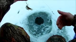 Зимняя рыбалка в Саратовской области с Елшанка 2020 г