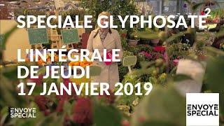 Envoyé spécial. Glyphosate : comment s'en sortir ? - 17 janvier 2019 (France 2)