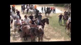 Udruga Ljubitelji konja - regija Ludbreg