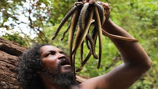 A Caveman found a Snake nest on the higher mountain - Hunting snake and cooked in mountain cave