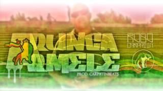 ROBO ft. Carpatin - Arunca armele (Prod. CarpatinBeats)