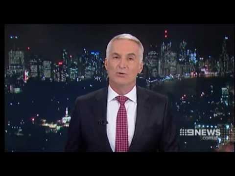 Queensland Cat Curfew And Cat Enclosures