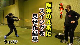 【驚愕】阪神の4番にライパチのスイングを見せた結果…