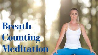 Breath Counting Meditation - Beginner Friendly Meditation