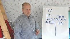 Sauli Suominen, palveluohjaus pähkinänkuoressa