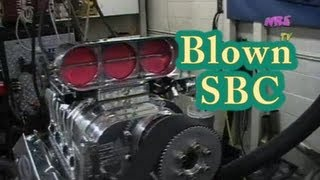 """""""Magnificent Noise.""""   Roots Blown 434 SBC from Nelson Racing Engines.  Blown Chevy.  Camaro"""