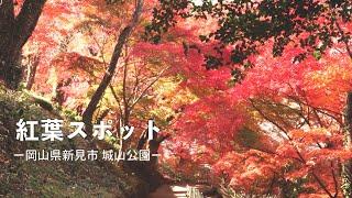 岡山県紅葉スポットー新見市 城山公園ー