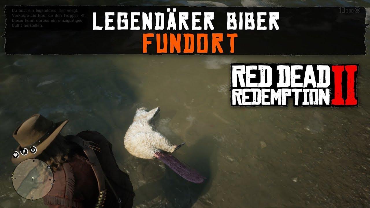 Red Dead Redemption 2 Biber