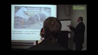 Электрошокер вызывает микроинфаркты у слонов в цирке