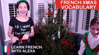 Joyeux Noël 2015 from all of us at Learn French With Alexa!