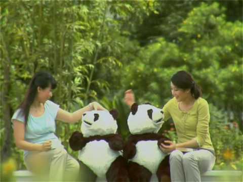 Panda 1 ch359