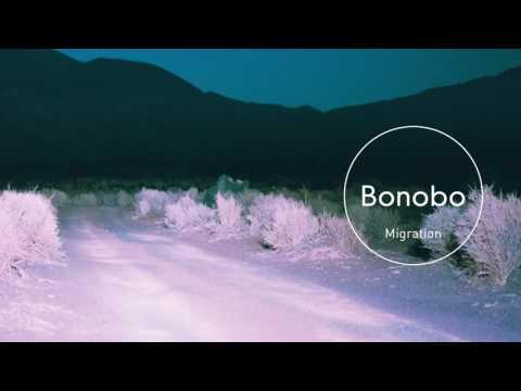 Bonobo : Outlier
