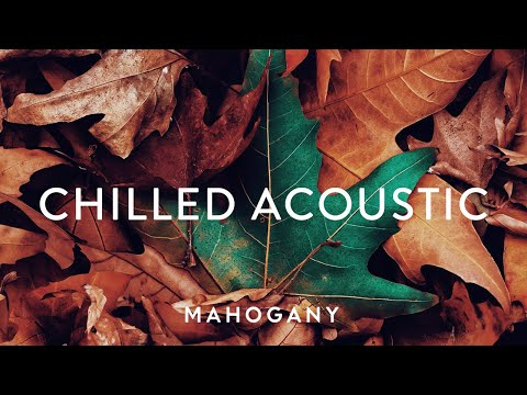 Chilled Acoustic Vol. 3 🌿 Indie Folk Compilation | Mahogany Playlist