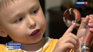 Пятилетний житель Кубани намерен в будущем создать эликсир молодости