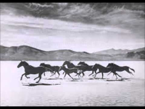 Eagles And Horses By John Denver With Lyrics