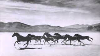Watch John Denver Eagles And Horses im Flying Again video