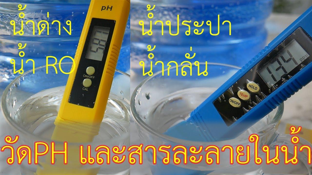 ทดสอบ alkaline water (น้ำด่าง) RO water (น้ำกรอง RO) Tap water (น้ำประปา) pure water (น้ำกลั่น)