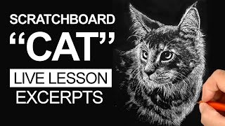 Scratchboard Art Lesson - Cat