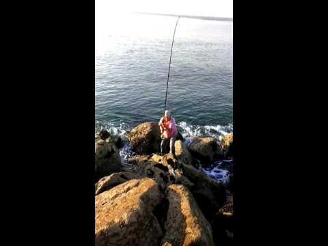 Pesca ao fundo - sargo